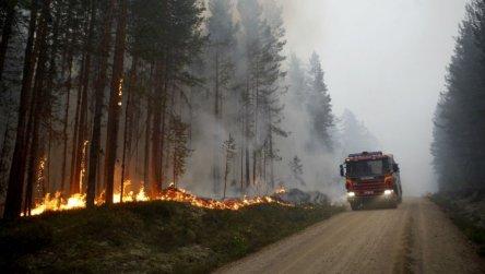 La Suède, la Grèce, la Lettonie et les Etats Unis sont frappés par des très importants incendies.
